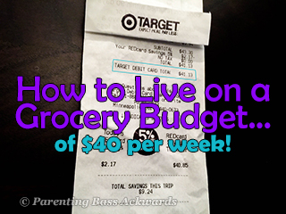Living-On-a-$40-a-Week-Food-Budget